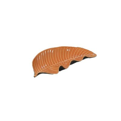feuille-pothos-mandarine-barbotine