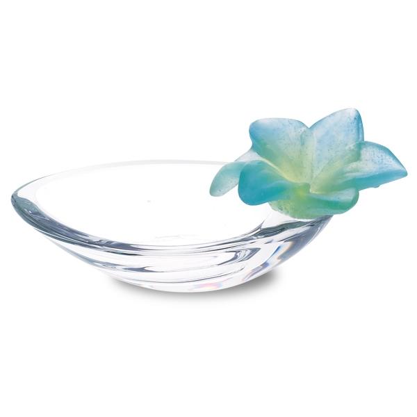 Amaryllis-coupelle-turqoise-turquoise