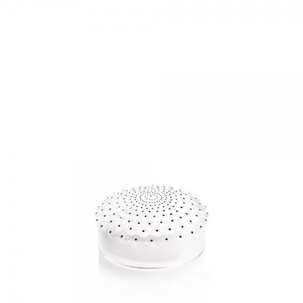 boite-cristal-cactus-lalique