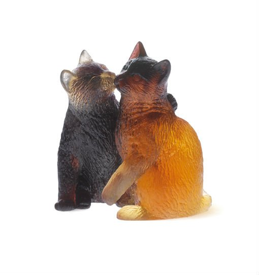 kittens-daum