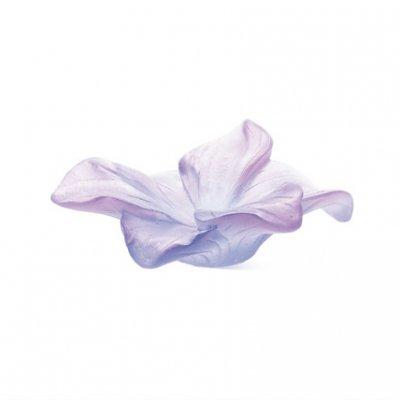 coupe-amaryllis-fleur-mauve-daum