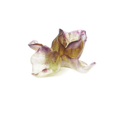 iris-fleur-violette-daum