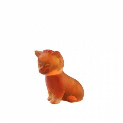 mini-chaton-ambre-daum