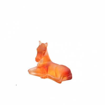 mini-poulain-ambre-daum