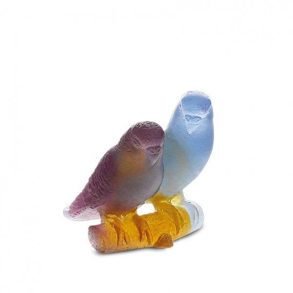 Couple-perruches-bleu-daum
