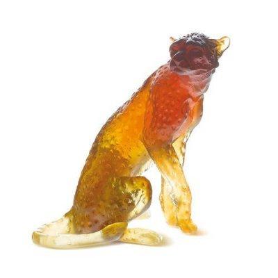 guepard-ambre-daum