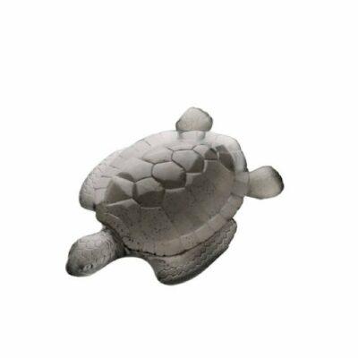 tortue-mer-grise-daum