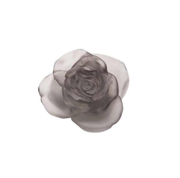 fleur-rose-grise-daum