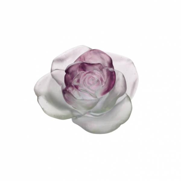 fleur-verte-rose-daum
