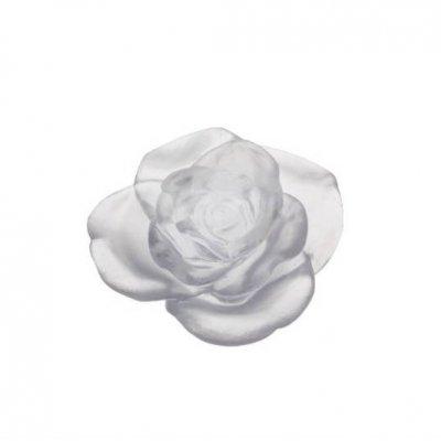 rose-blanche-daum