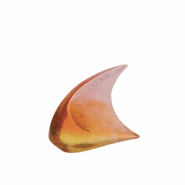 poisson-petit-modele-carnoy-xavier