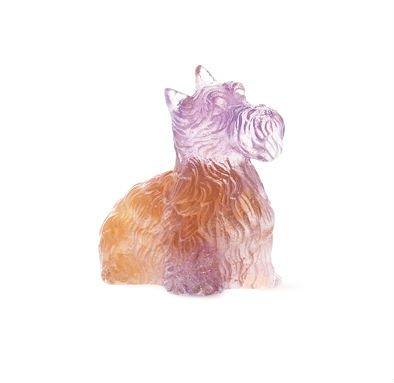 highlander+terrier+ambre-violet+daum
