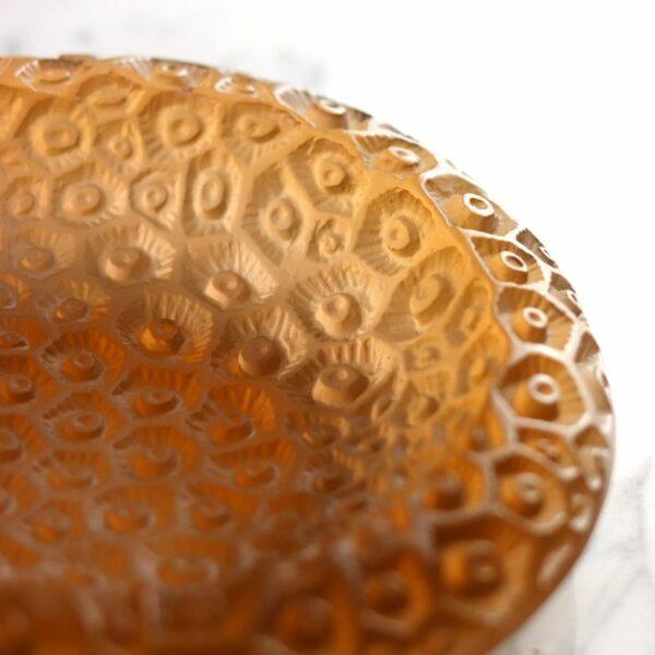 coupe petit modele coraux collection Daum France