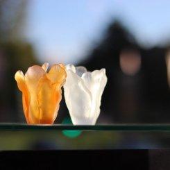 mini-vase-tulipe-daum-france