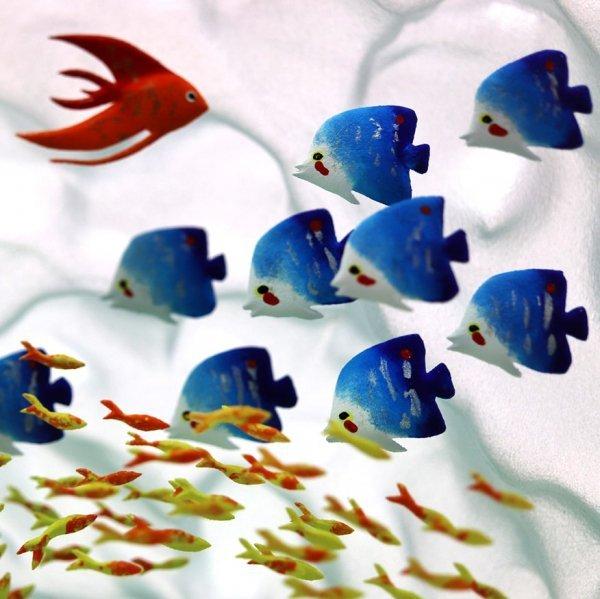 poisson-corallien-verre