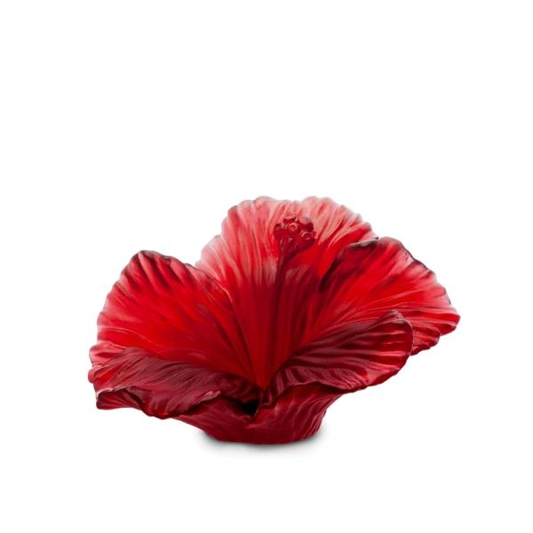 Fleur Hibiscus Daum