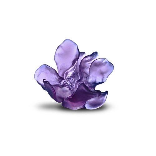 Fleur Imaginaire Daum