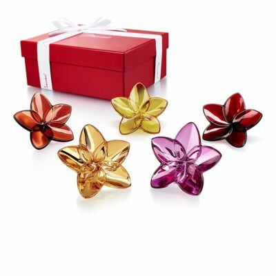 coffret-fleur-bloolm-collection-Baccarat
