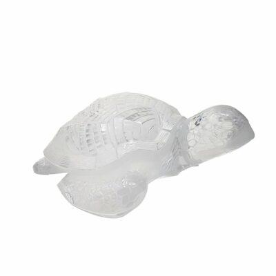 Tortue-marine-Lalique