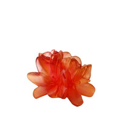 Fleur-decorative-safran-Daum