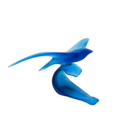 Oiseau-marin-by-Xavier-Carnoy-Daum