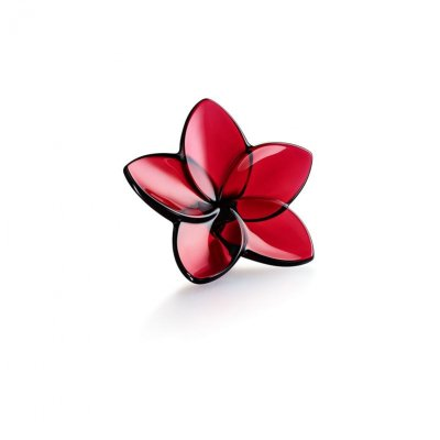 fleur-bloom-rouge-Baccarat