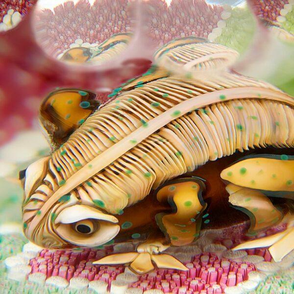 crapaud-grenouille-presse-papier-cristal-saint-louis